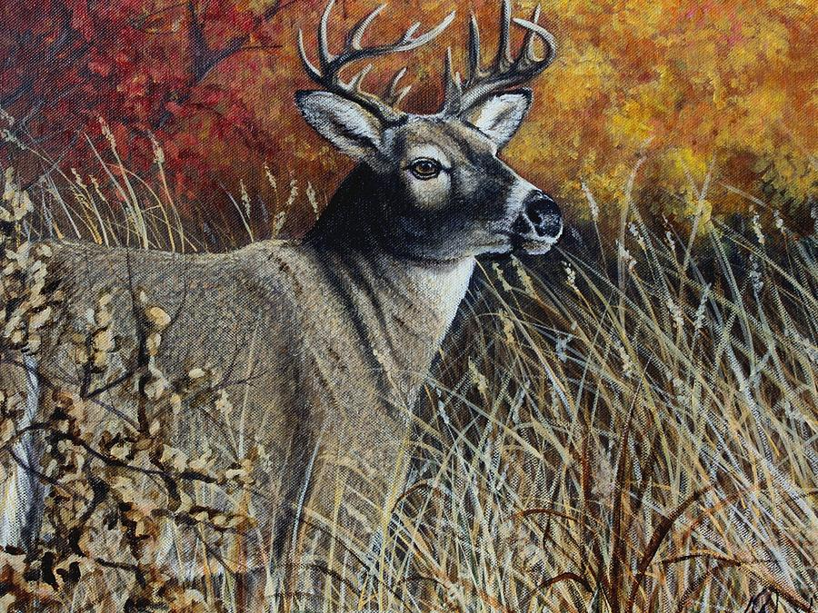 Autumn Painting - Autumn Buck by Kimberly Blaylock