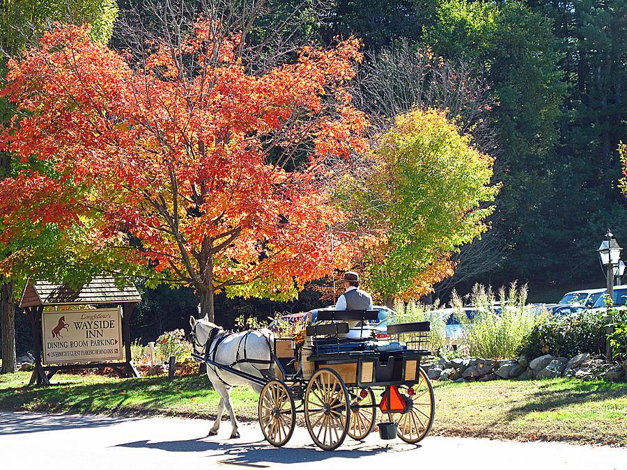 Fall Photograph - Autumn Carriage Ride by Barbara McDevitt