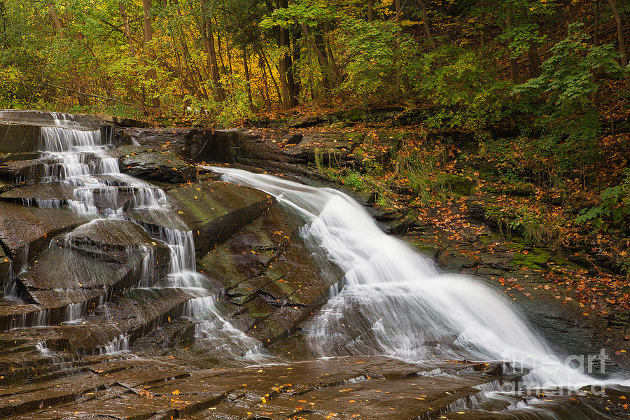 Michele Photograph - Autumn Cascade by Michele Steffey