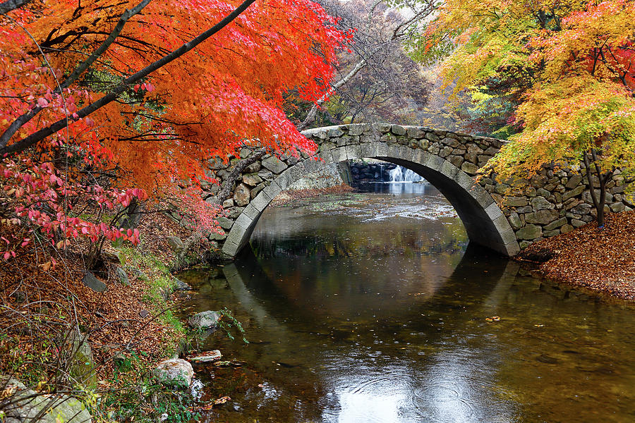 Horizontal Photograph - Autumn Color And Old Stone Arched by Panoramic Images