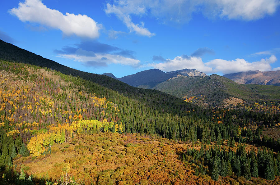 Autumn Color In Colorado Rockies Photograph by A L Christensen