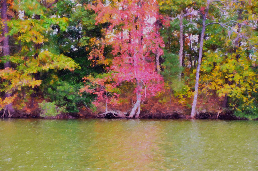 Background Painting - Autumn Color In Norfolk Botanical Garden 1 by Jeelan Clark