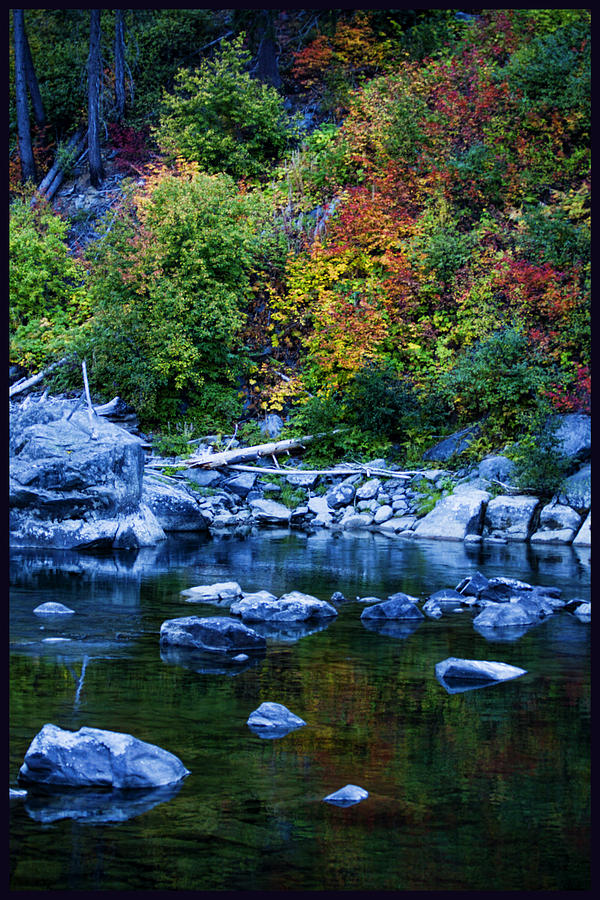 Autumn Color by Karen Ulvestad