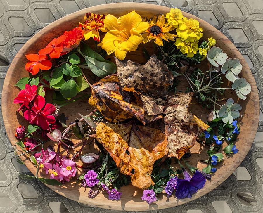 Autumn Color Wheel Photograph By Russ Cahn