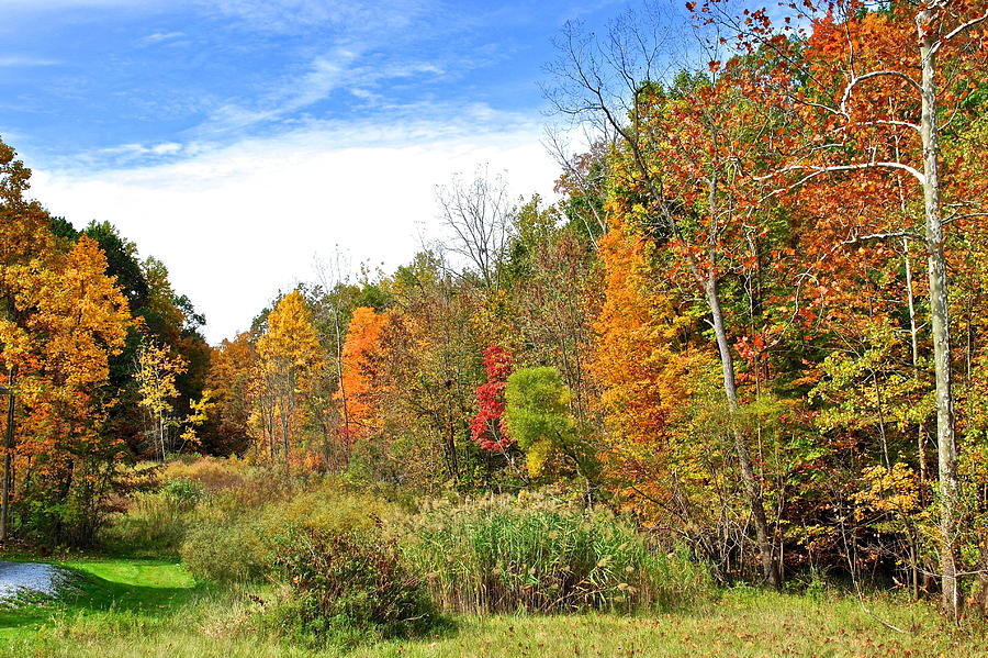 Landscape Photograph - Autumn Colors by Frozen in Time Fine Art Photography