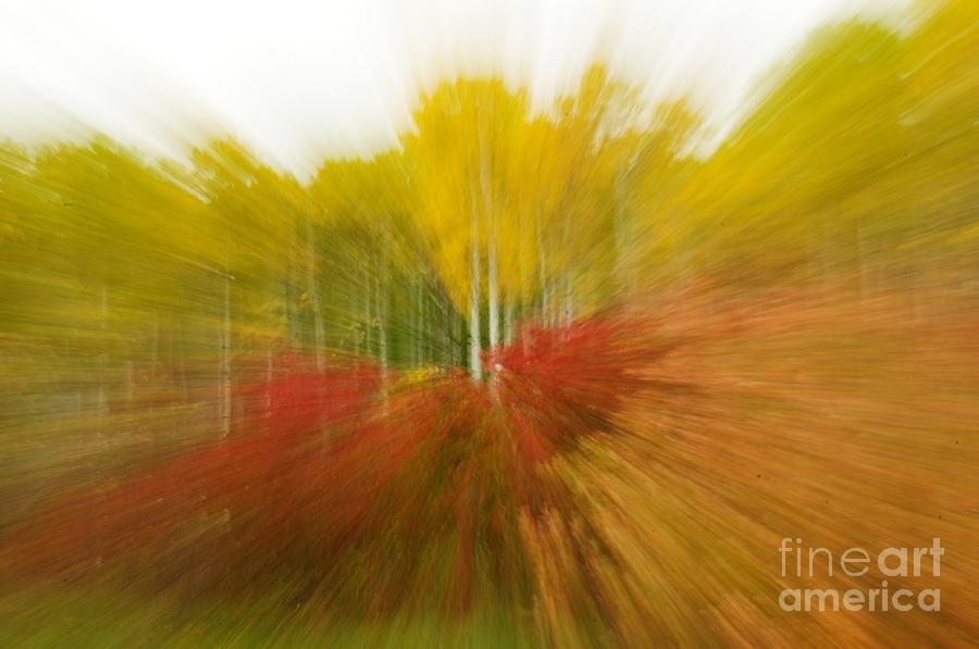 Autumn Photograph - Autumn Colors by Vivian Christopher