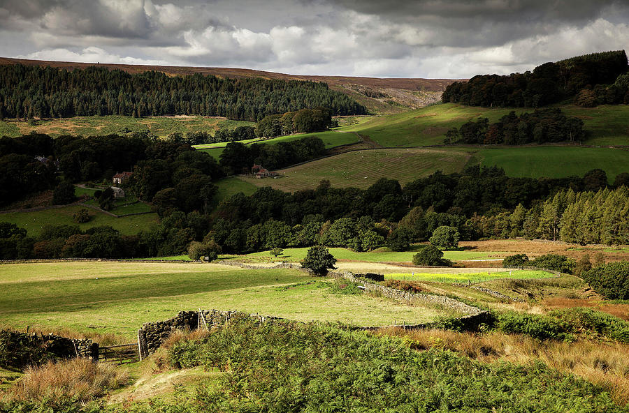 Autumn Colours In The North Yorkshire Photograph by Dan Kitwood