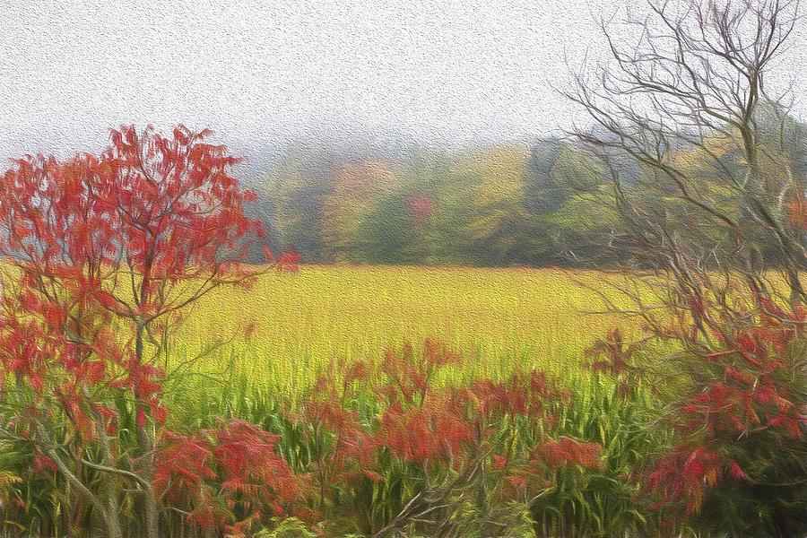 Tom Singleton Photograph - Autumn Cornfield II by Tom Singleton