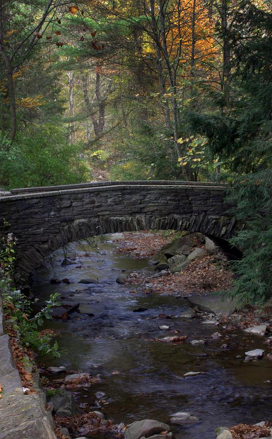 New York State Park Photograph - Autumn Creek by J Allen