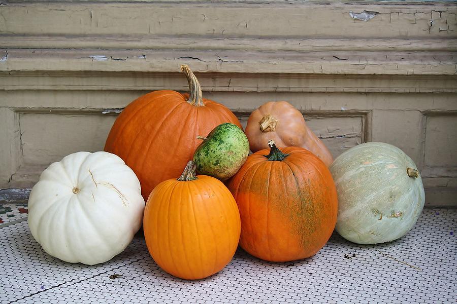 Pumpkin Photograph - Autumn Days by Paulette Thomas