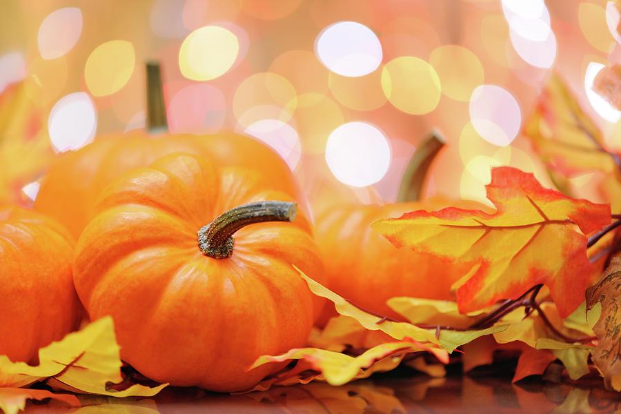 Autumn Decoration Photograph by Moncherie
