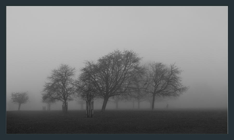 Autumn Dense Fog Photograph