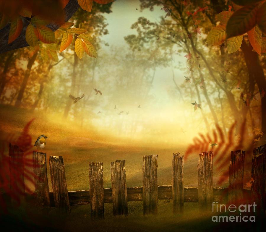 Autumn Digital Art - Autumn Design - Forest With Wood Fence by Mythja  Photography