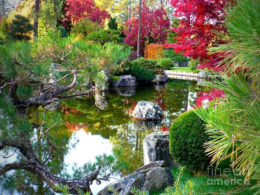 Autumn Photograph - Autumn Dream by Carol Groenen