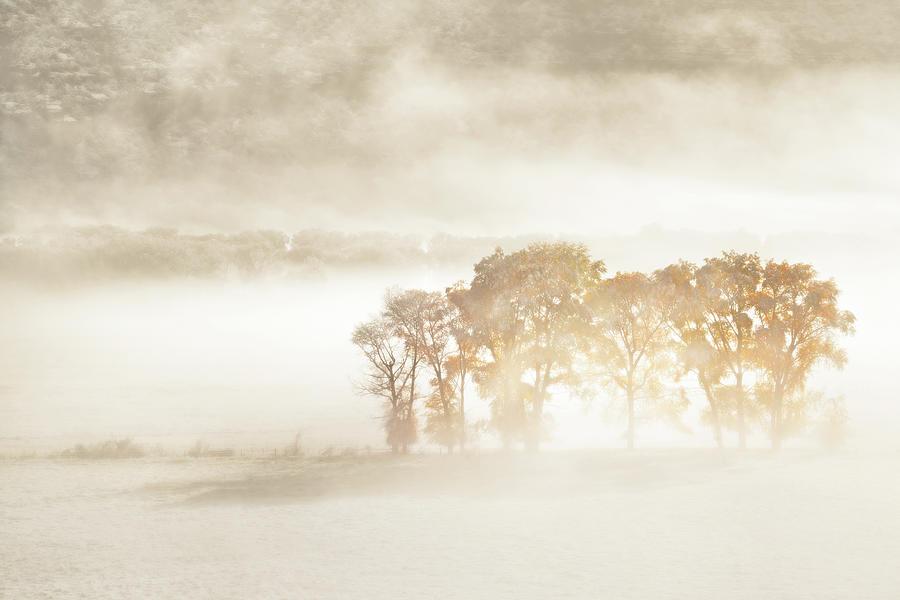 Colorado Photograph - Autumn Dreams by John Fan