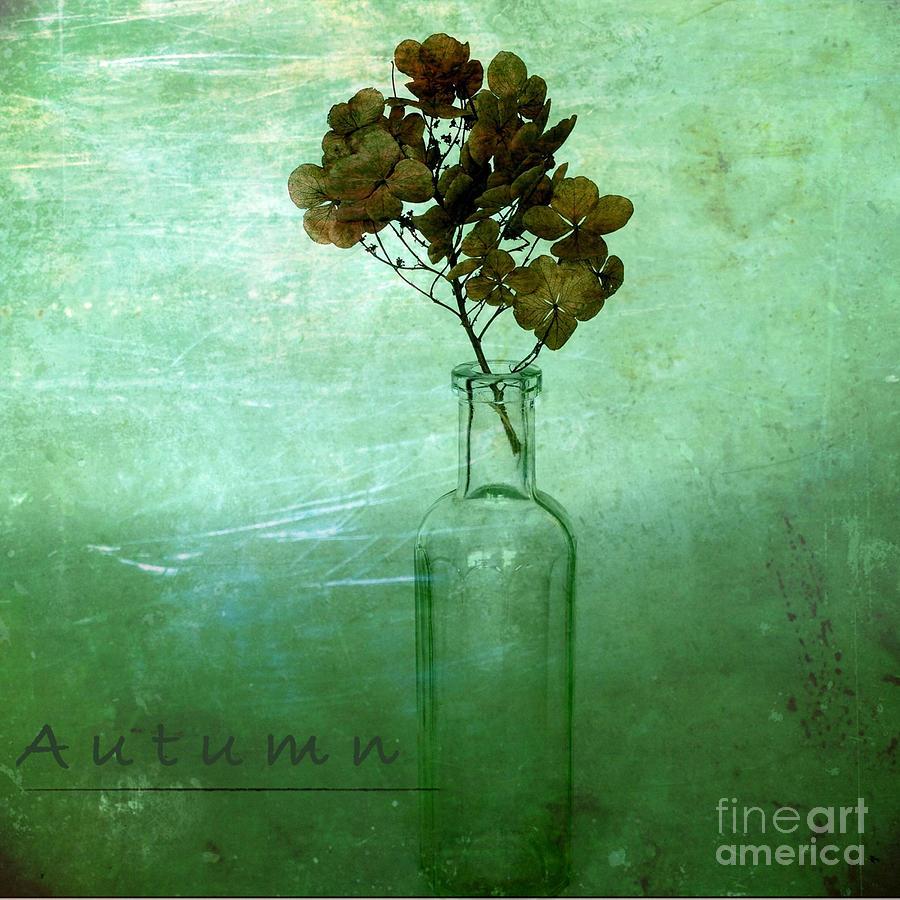 Autumn Photograph - Autumn by Elena Nosyreva