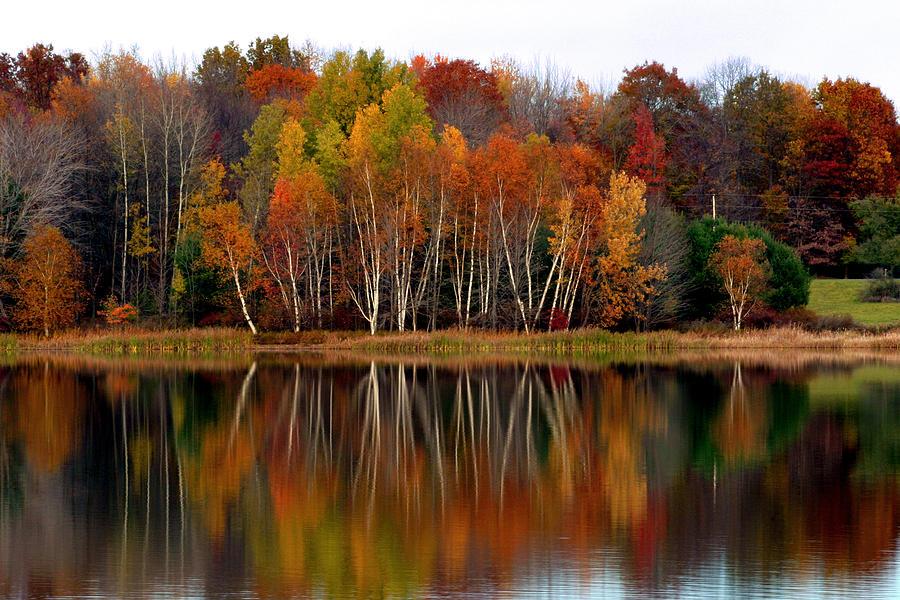 Mitarai Valley Autumn Leaves