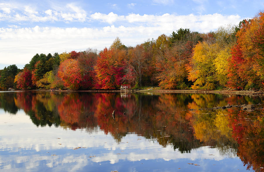 Autumn Photograph - Autumn Explosion by Luke Moore