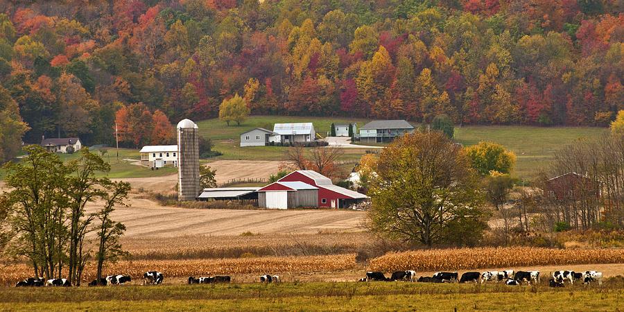 Autumn Farming Scene Photograph By Randall Branham