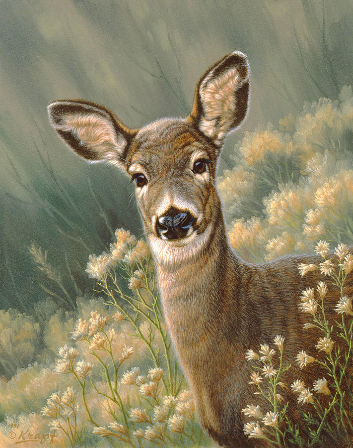 Wildlife Painting - Autumn Fawn-blacktail by Paul Krapf