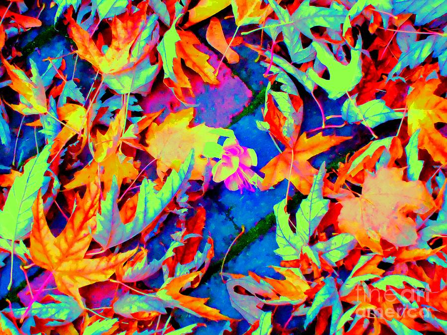 Leaves Photograph - Autumn Fiesta by Ann Johndro-Collins