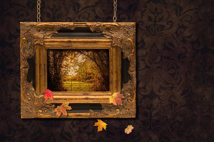 Autumn Photograph - Autumn Frame by Amanda Elwell