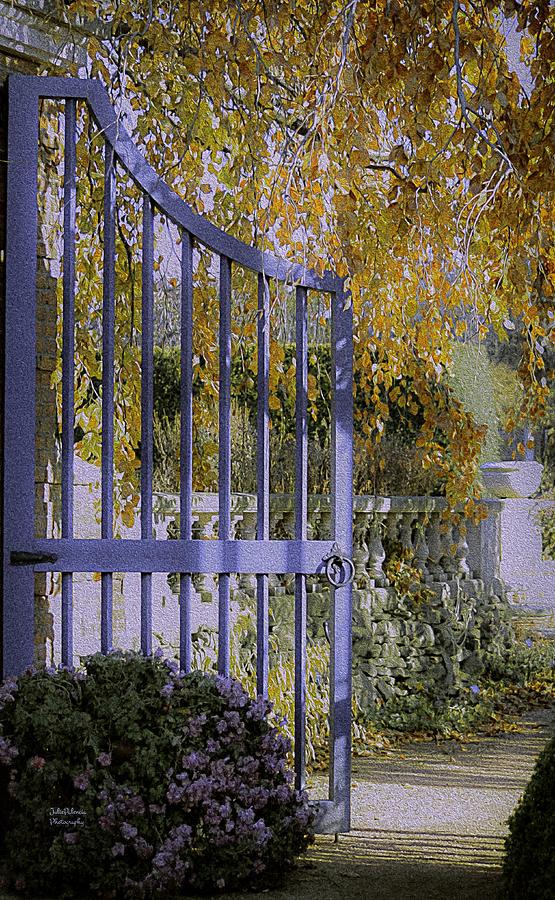 Garden Photograph - Autumn Garden by Julie Palencia