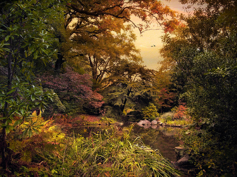 Nature Photograph - Autumn Garden Sunset by Jessica Jenney