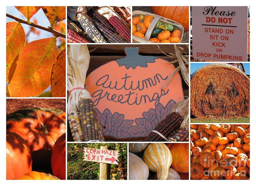 Greeting Card Photograph - Autumn Greetings - 5 X 7 Greeting Card by Cheryl Hardt Art