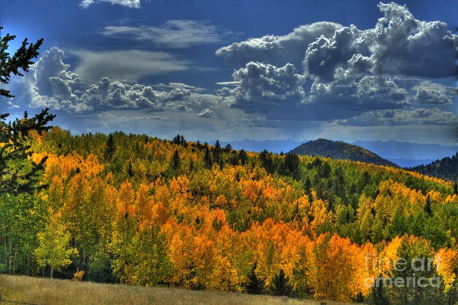 Autumn in Colorado by Tony Baca