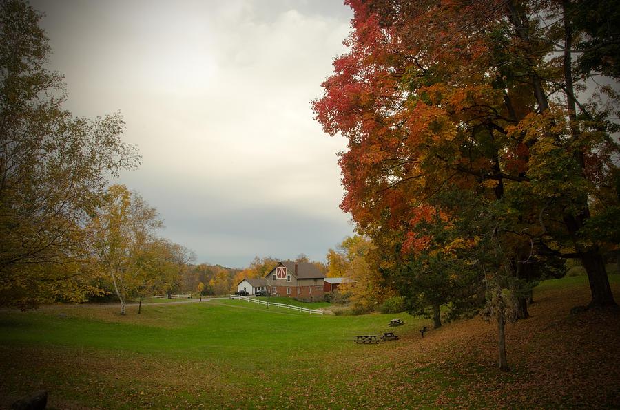 Autumn In Connecticut. Photograph by Nestor m Montanez