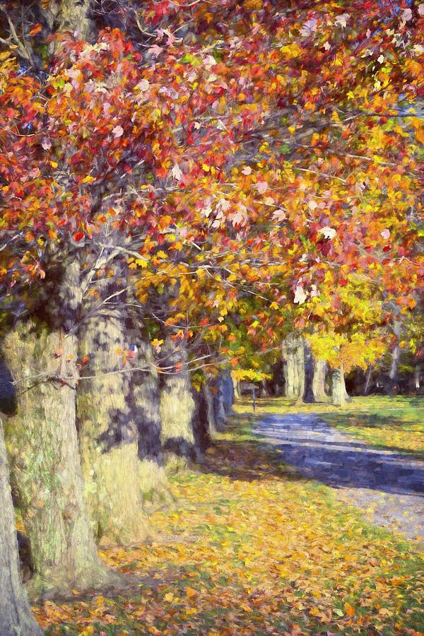 Joan Carroll Photograph - Autumn In Hyde Park by Joan Carroll