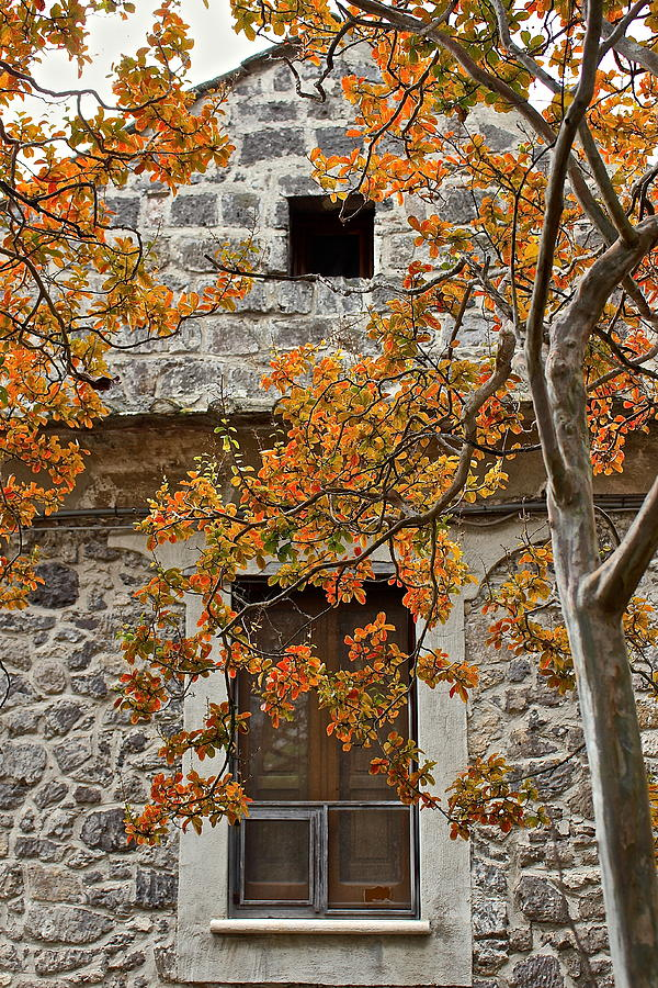 Autumn Photograph - Autumn in Italy by Claudia Croneberger