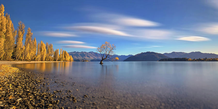 Lake Photograph - Autumn In Lake Wanaka by Hua Zhu