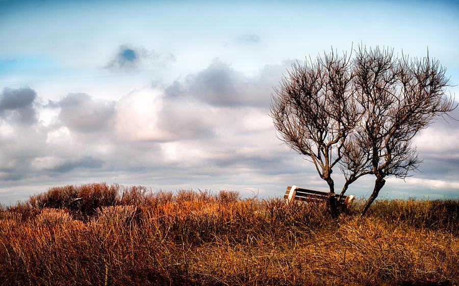Seasons Photograph - Autumn In Maine by Bob Orsillo