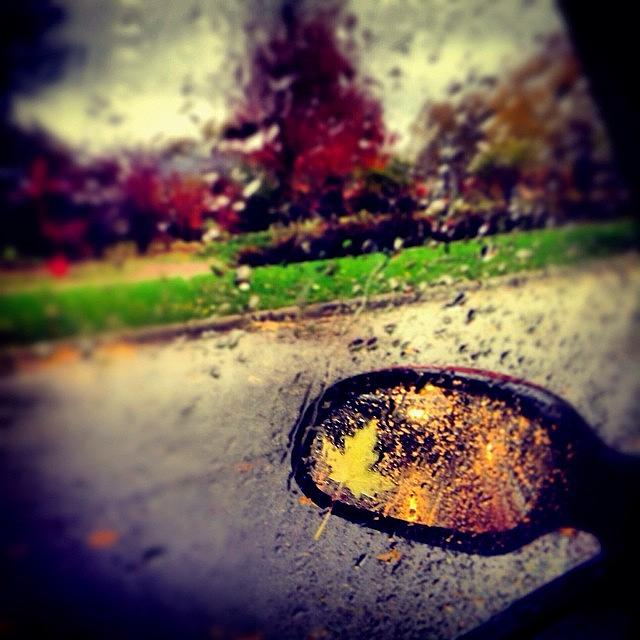 Autumn Photograph - Autumn In Rear View by Frank J Casella