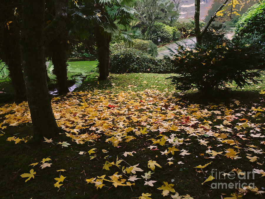 Autumn Photograph - Autumn In Roseland Cornwall by Louise Heusinkveld