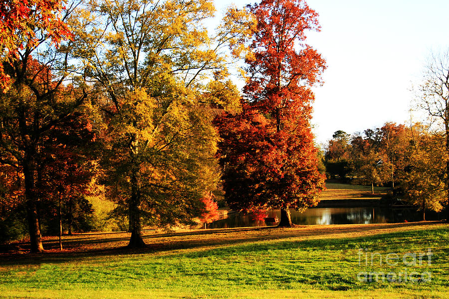 Landscapes Photograph - Autumn In The Air... by Jinx Farmer