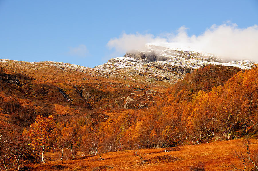 Autumn Photograph - Autumn In The Mountains by Gry Thunes