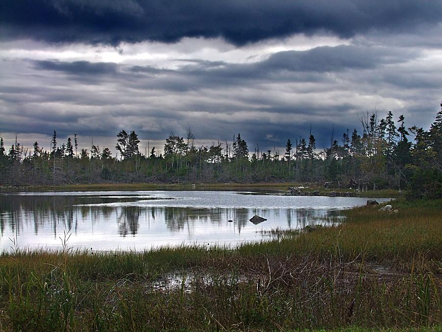 Nova Scotia Photograph - Autumn In The Salt Marshes by George Cousins