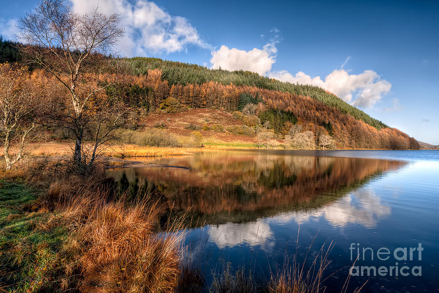 Autumn Photograph - Autumn In Wales by Adrian Evans