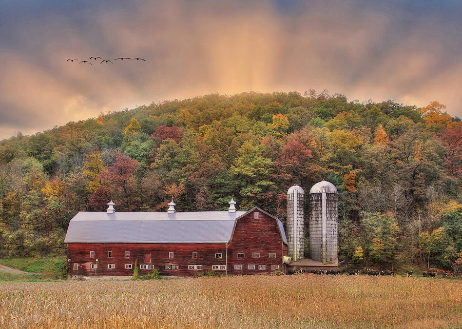Barn Photograph - Autumn In Wellsboro by Lori Deiter