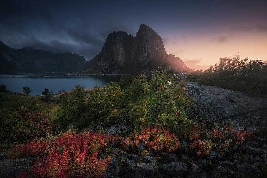 Norway Photograph - Autumn Is Coming by Carlos F. Turienzo