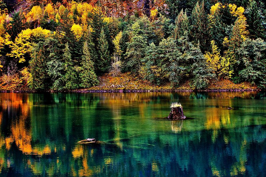 Diablo Photograph - Autumn Jade by Benjamin Yeager