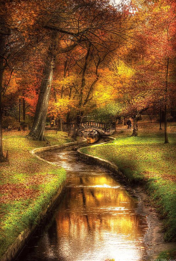 Savad Photograph - Autumn - Landscape - By A Little Bridge  by Mike Savad