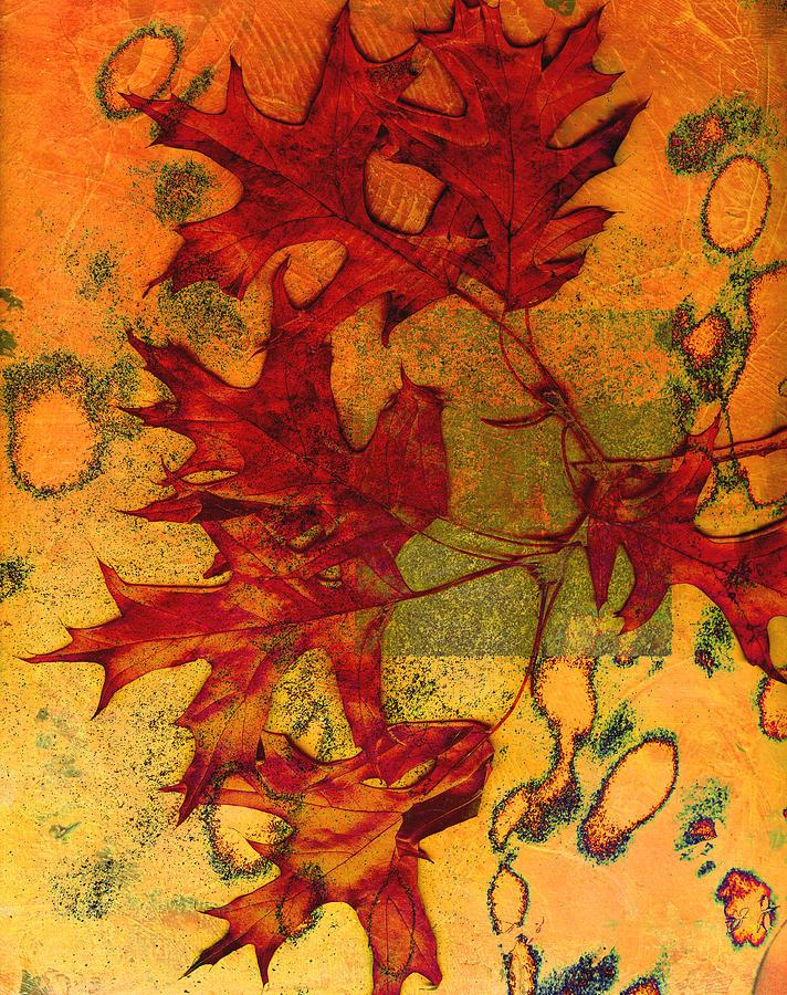 Autumn Leaves Photograph - Autumn Leaves by Ann Powell