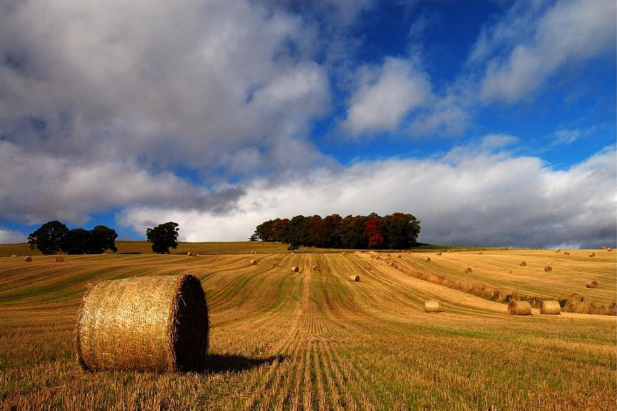 Autumn Photograph - Autumn by Macrae Images