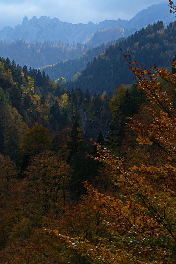 Autumn Photograph - Autumn Magic - Austria by Phil Banks