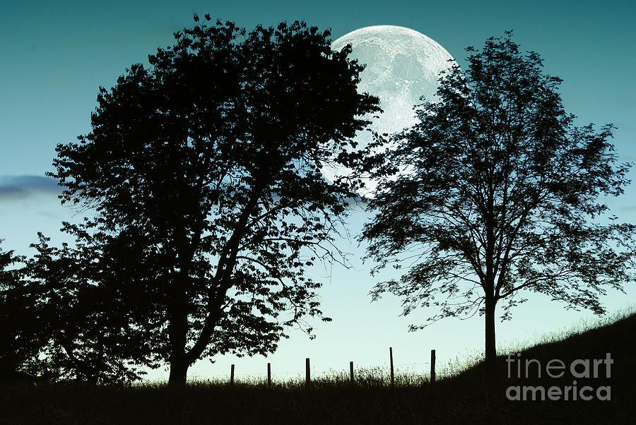 Autumn Moon Rise Photograph