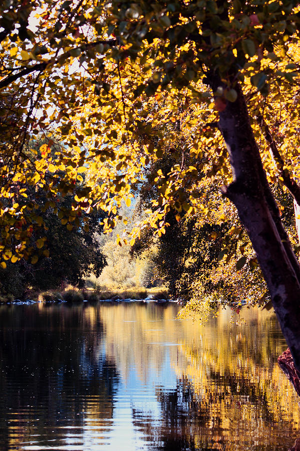 Applegate Photograph - Autumn On The Applegate by Melanie Lankford Photography